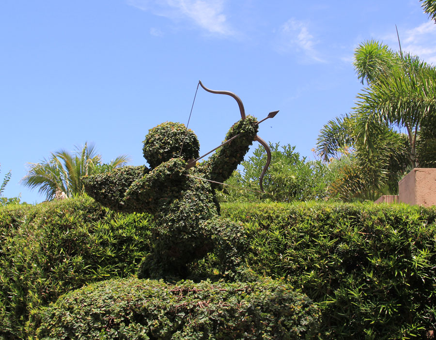 Cupid's aim is true at Florida Botanical Gardens in Largo.