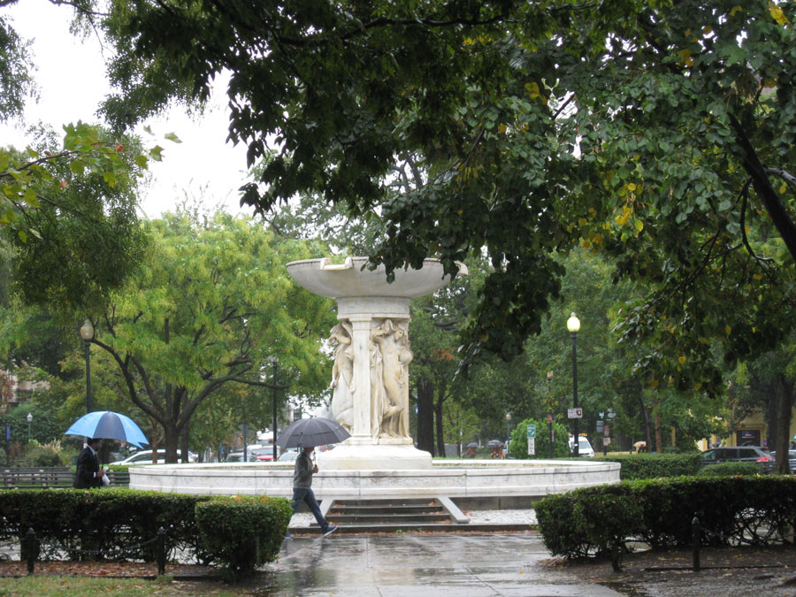 D.C. has had record breaking rain this summer. Keep those umbrellas handy.