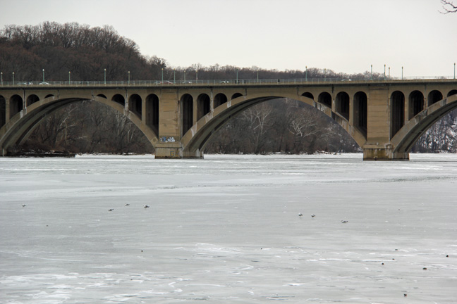 The Potomac has been frozen solid for weeks this winter.